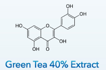 Green Tea 40% Extract