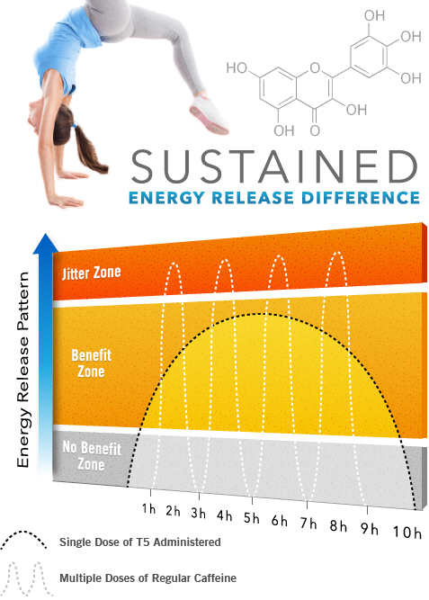 Fat Loss Energy Pattern