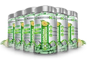 Garcinia Cambogia 6 Bottle Bundle