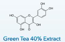 Green Tea 40% Extract